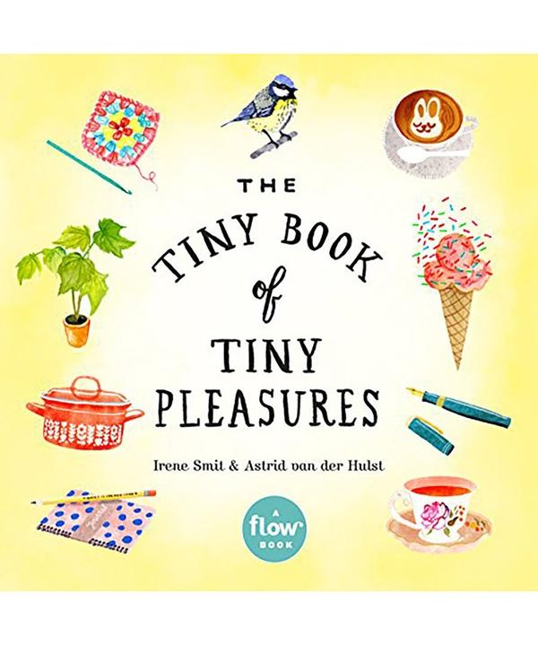 Tiny Book Of Tiny Pleasures