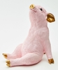 Pink And Gold Pig