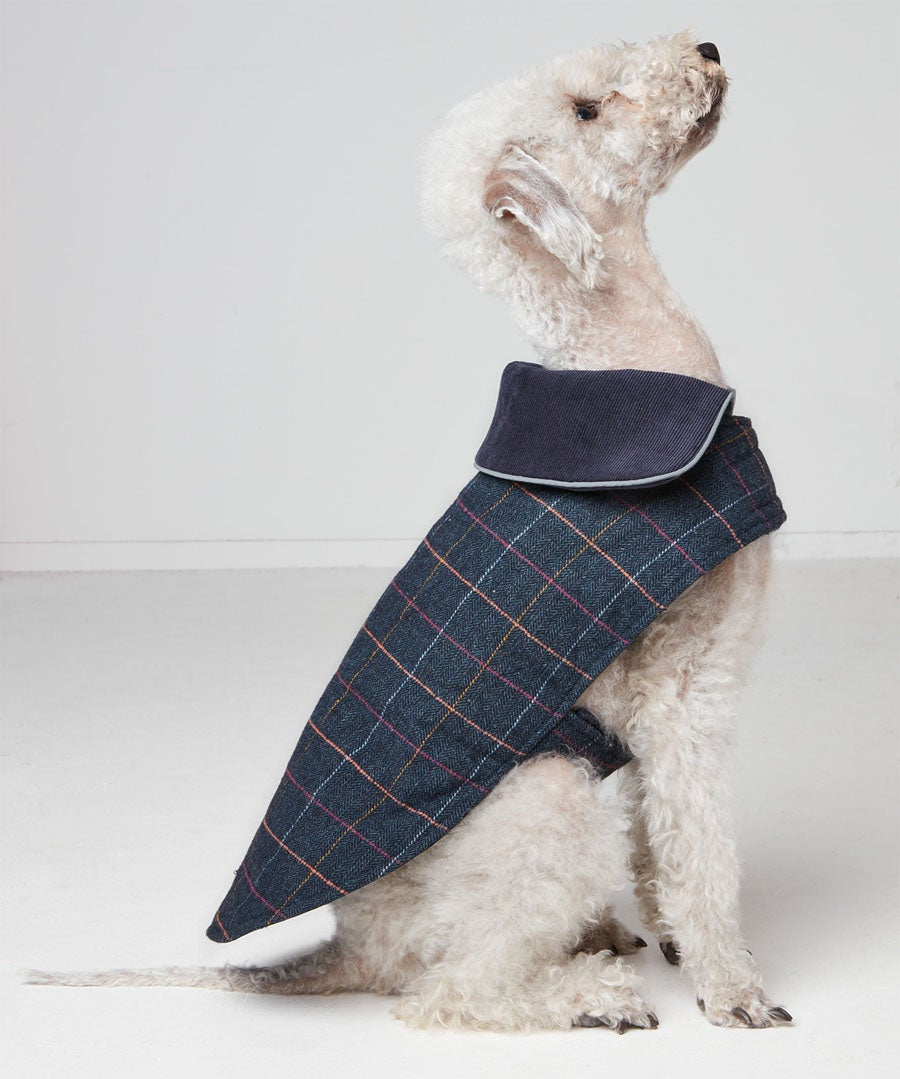 Joes Reversible Doggy Coat Model Front