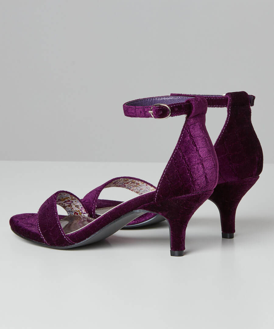 Shall We Dance Velvet Shoes Back