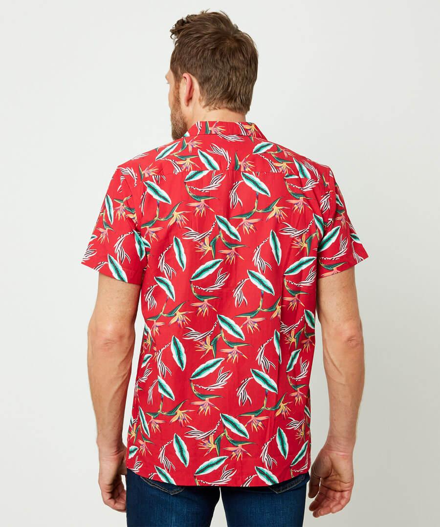 Have Some Fun Shirt