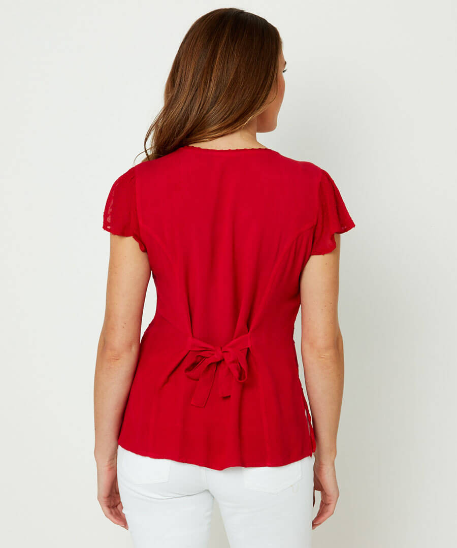 Radiant Embroidered Blouse Model Back