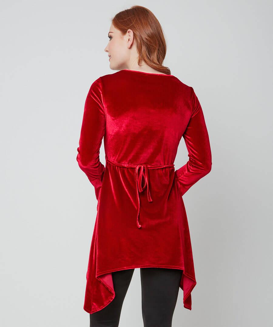 Sumptuous Velvet Tunic Model Back
