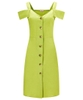 Lovers Lime Dress