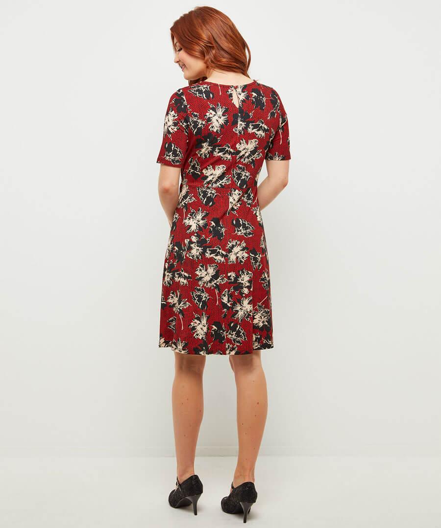 Marvellous Printed Dress Model Back