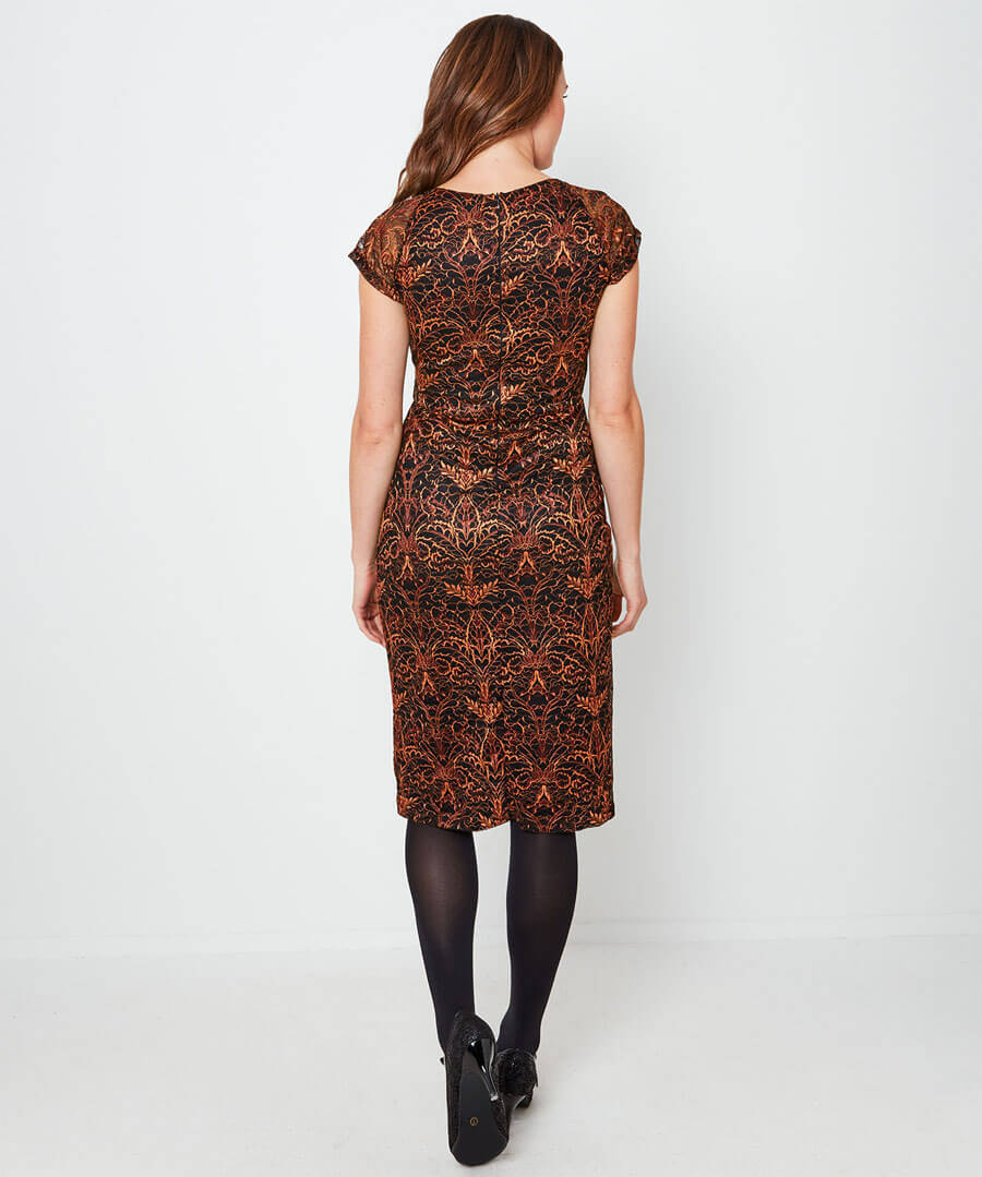 Alluring Lace Dress Model Back