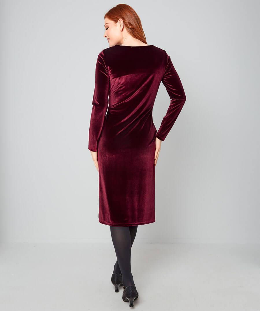 Vivacious Velvet Dress Model Back