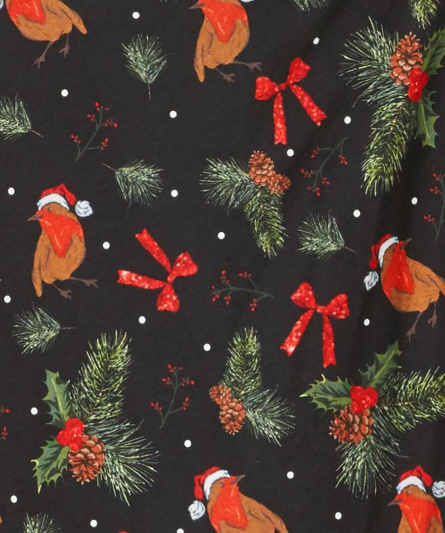 Lovely Robin Christmas Dress Back