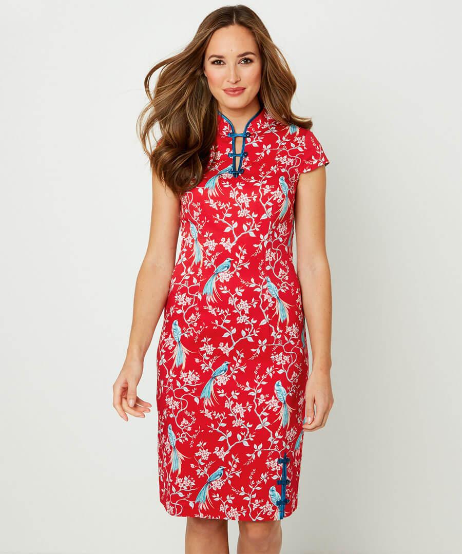 Elegant Mandarin Collar Dress Model Front