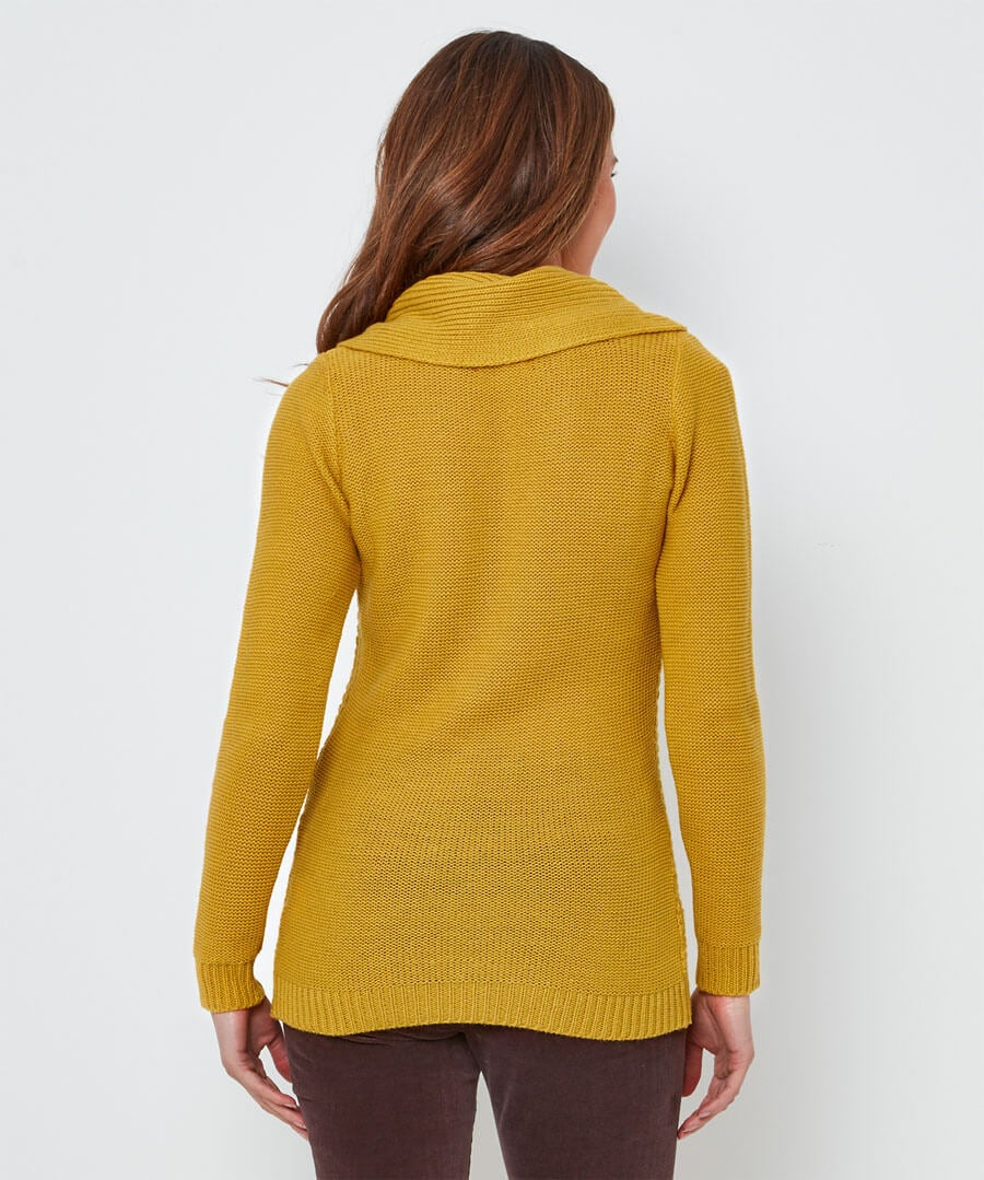 Quirky Collared Knit Model Back