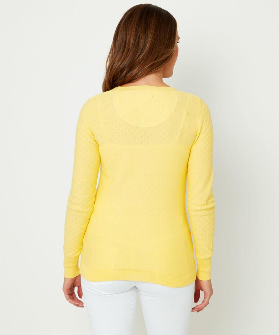 Lemon Cardigan Model Back