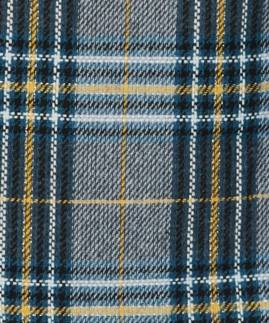 Quirky Check Skirt Back