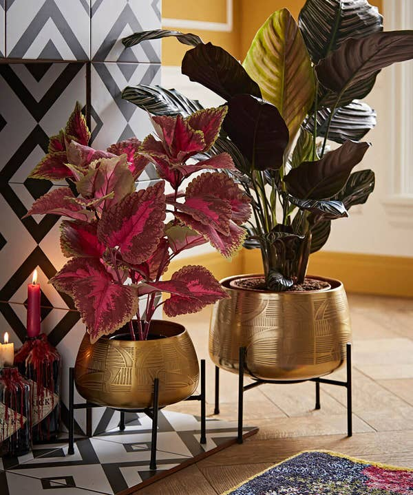 Set Of 2 Gold Planters