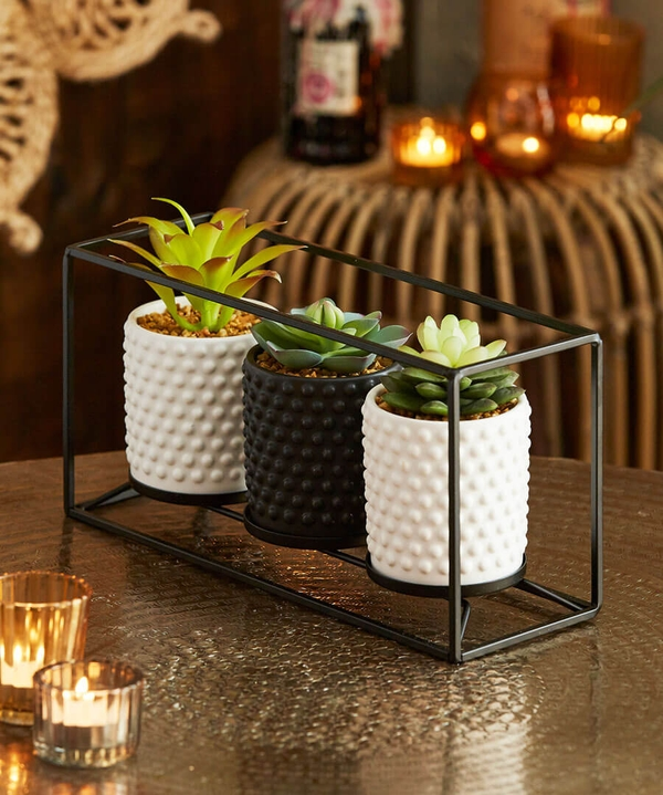 Set Of 3 Succulent Pots On Stand