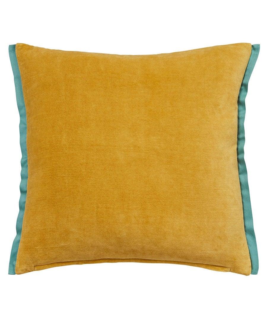 Velvet Border Cushion