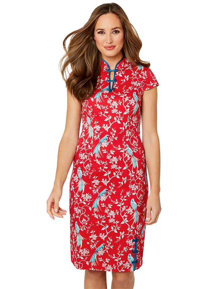 Joe Browns Elegant Mandarin Collar Dress - Model