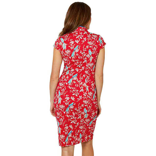 Joe Browns Elegant Mandarin Collar Dress - Back